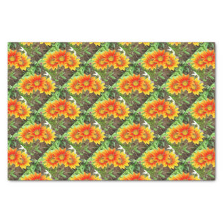 Three Bright Colored Gazania Flowers and Garden Tissue Paper
