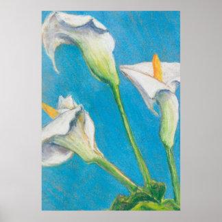 Three Calla Lilies Modern Fine Art Poster