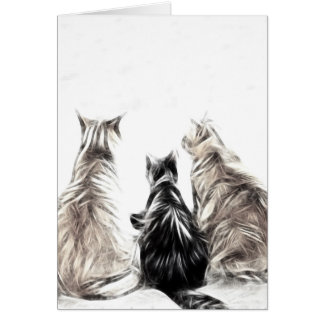 Three Cats Card
