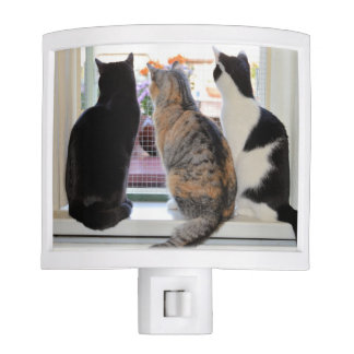 Three Cats Looking Out Window Night Light