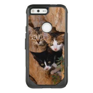 Three Cute Curious Cat Kittens Faces Funny Photo _ OtterBox Commuter Google Pixel Case