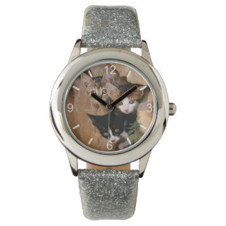 Three Cute Curious Cat Kittens Funny - dial-plate Watch