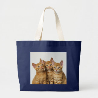 Three cute ginger kittens side by side large tote bag