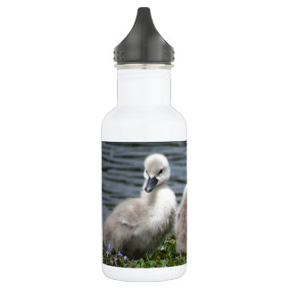 Three Cygnets 532 Ml Water Bottle