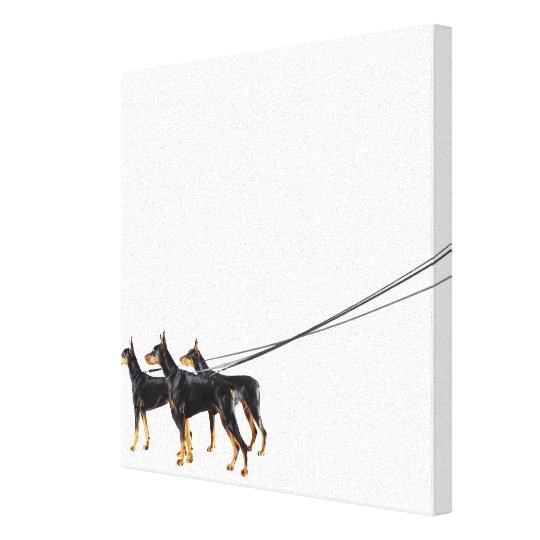 Three Dobermans on leash Canvas Print