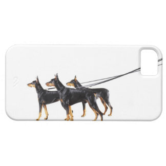 Three Dobermans on leash iPhone 5 Cases