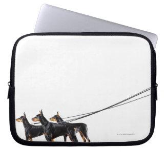 Three Dobermans on leash Laptop Computer Sleeves