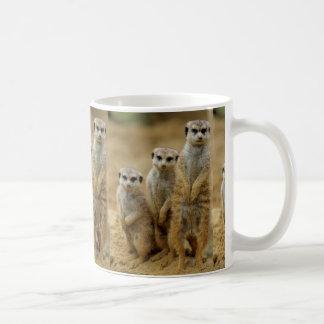 three earth males (Suricata suricatta) Coffee Mug