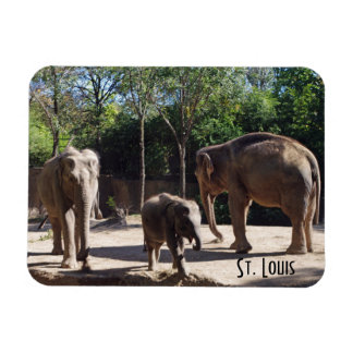 Three Elephants Magnet