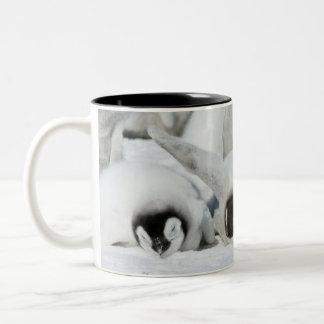 Three Emperor Penguin Chicks - mug