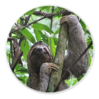 Three finger sloth ceramic knob
