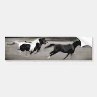 Three Galloping Horses Bumper Sticker