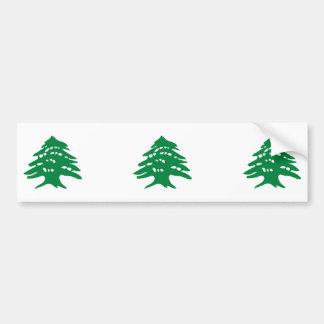 THREE Green Lebanon Cedar Tree Bumper Sticker