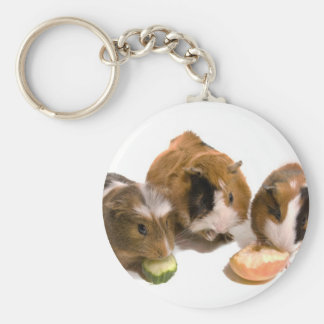 three guinea pigs who eat, keychain