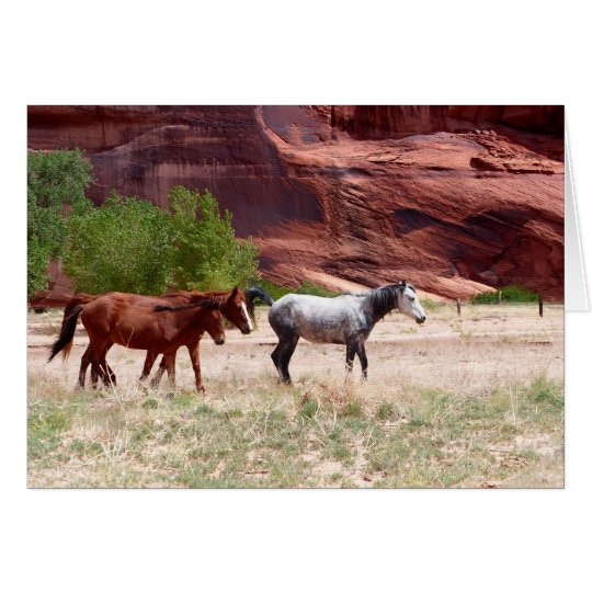 Three Horses in a Canyon, Blank Greeting Card