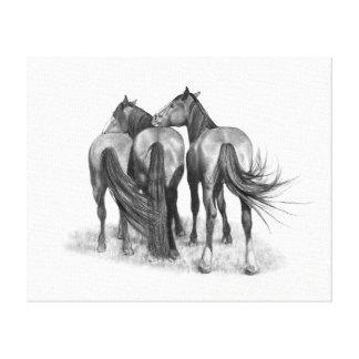 Three Horses in Pencil, Equine Art Canvas Print