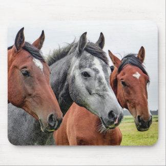 Three Horses Mouse Pad