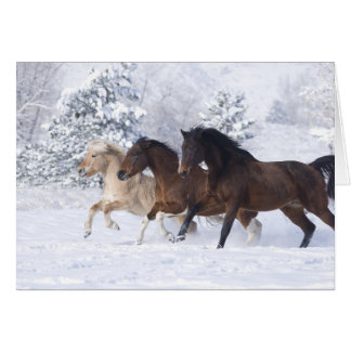 Three Horses Run in the Snow Greeting Card