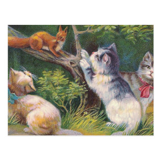 """""""Three Kittens and a Squirrel"""" Vintage Postcard"""