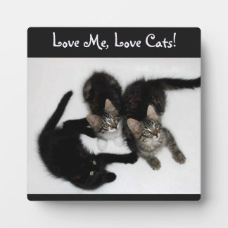 Three Kittens Love Me Love Cats Photo Plaque