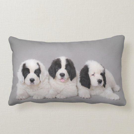 Three Landseer puppies Lumbar Pillow