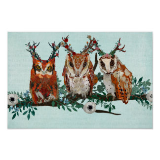 THREE LITTLE OWLS ON A BRANCH Art Poster
