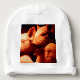 Three Little Pigs Baby Beanie