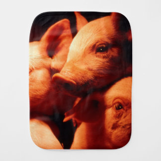 Three Little Pigs Burp Cloths