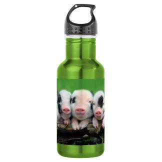 Three little pigs - cute pig - three pigs 532 ml water bottle