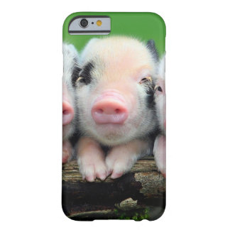 Three little pigs - cute pig - three pigs barely there iPhone 6 case