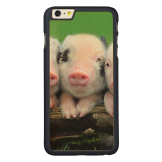 Three little pigs - cute pig - three pigs carved maple iPhone 6 plus case