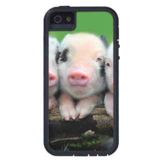 Three little pigs - cute pig - three pigs case for the iPhone 5