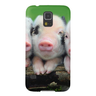 Three little pigs - cute pig - three pigs cases for galaxy s5