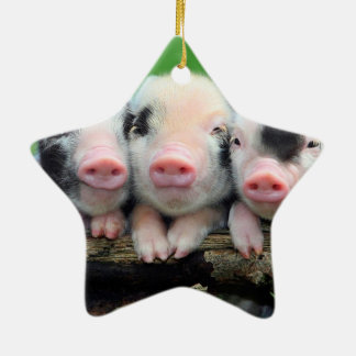 Three little pigs - cute pig - three pigs ceramic ornament