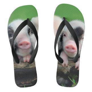 Three little pigs - cute pig - three pigs flip flops