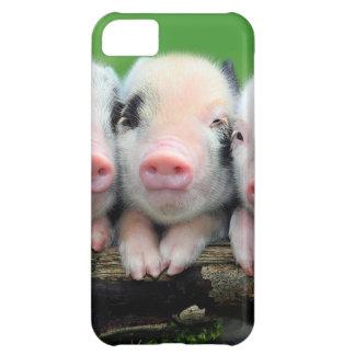 Three little pigs - cute pig - three pigs iPhone 5C cases