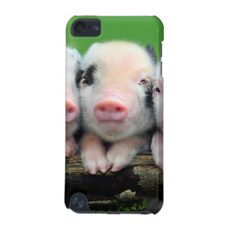 Three little pigs - cute pig - three pigs iPod touch (5th generation) covers
