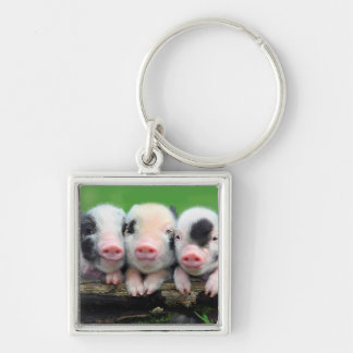 Three little pigs - cute pig - three pigs keychain