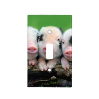 Three little pigs - cute pig - three pigs light switch cover