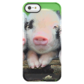 Three little pigs - cute pig - three pigs permafrost® iPhone SE/5/5s case
