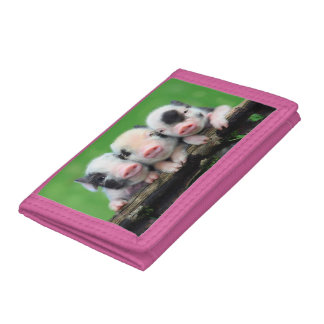 Three little pigs - cute pig - three pigs trifold wallet