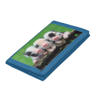 Three little pigs - cute pig - three pigs trifold wallets