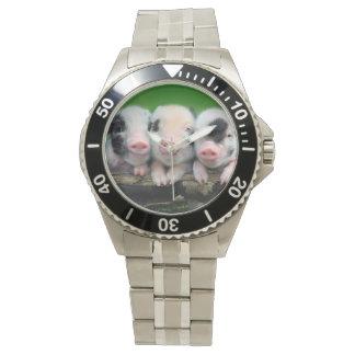 Three little pigs - cute pig - three pigs watch