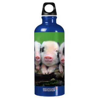 Three little pigs - cute pig - three pigs water bottle