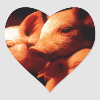 Three Little Pigs Heart Sticker