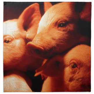 Three Little Pigs Napkins