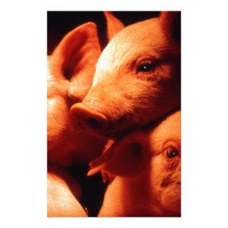 Three Little Pigs Stationery
