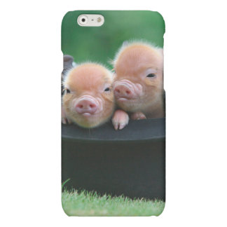 Three little pigs - three pigs - pig hat