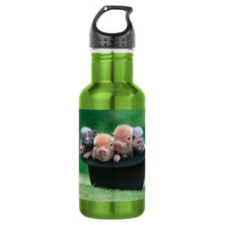 Three little pigs - three pigs - pig hat 532 ml water bottle