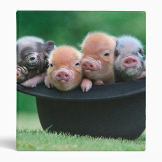 Three little pigs - three pigs - pig hat binder